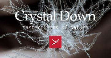 Crystal Down - Masterpieces of Nature